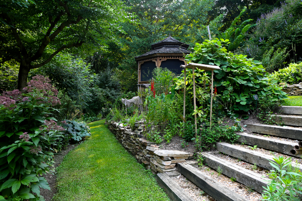 9 Tips for Planning the Herb Garden of Your Dreams- Jim Duke's Green Farmacy Gardens