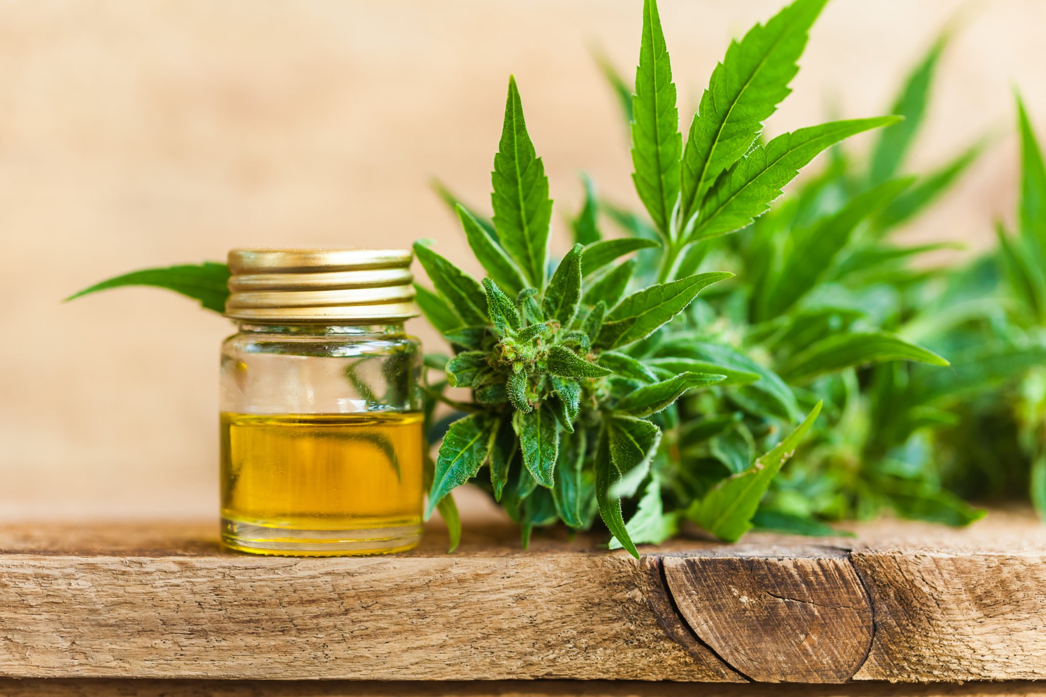 A vial of CBD oil and the flowery top of a hemp plant sit on a wooden tabletop. Experts expect access to legal CBD in Canada will improve in the coming year.