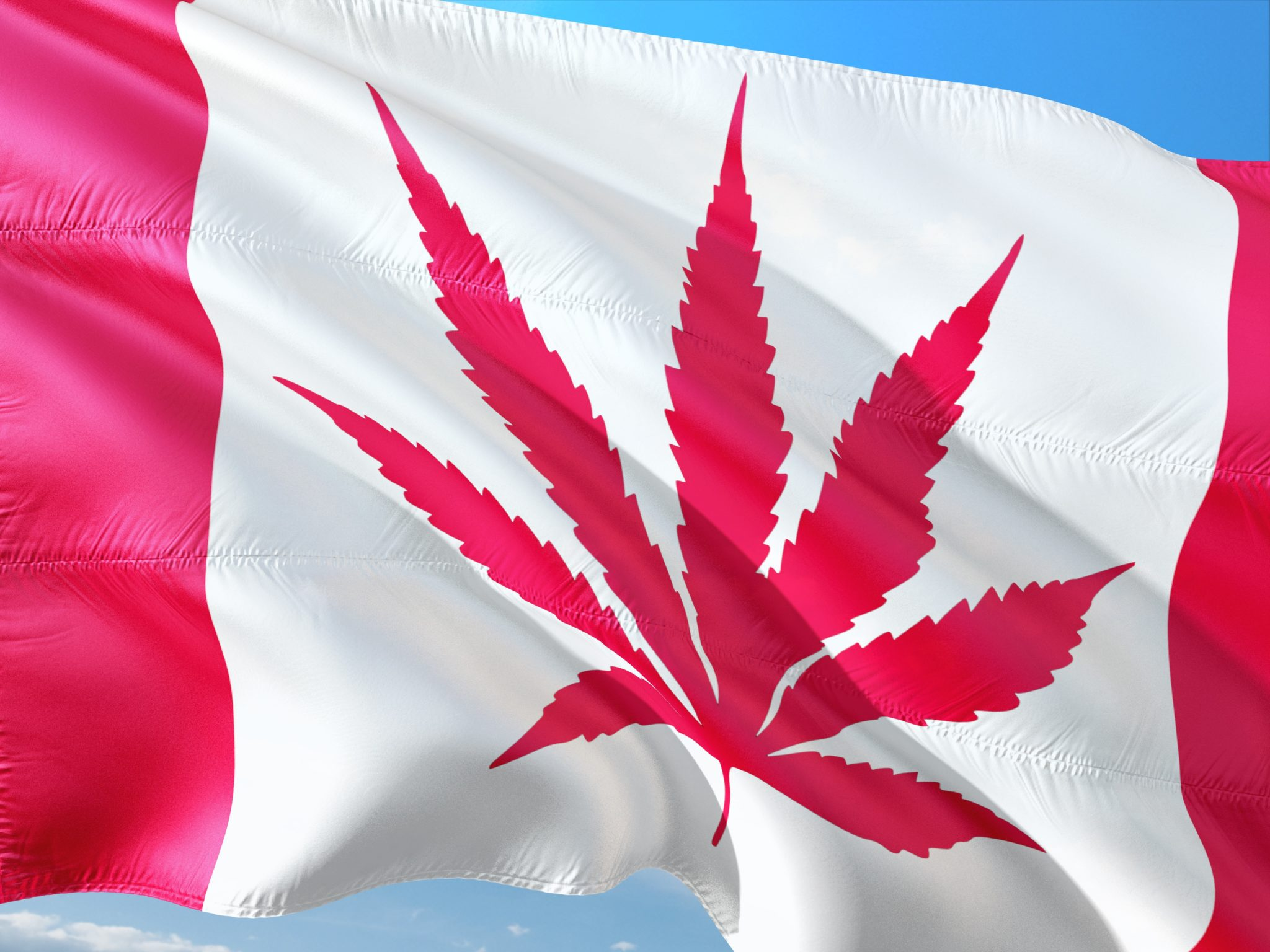 A photo of an altered Canadian flag flying against a blue sky. The typical maple leaf is replaced with a hemp or cannabis leaf.