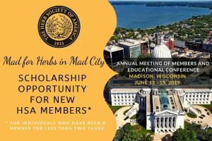 Conference 2019 scholarship