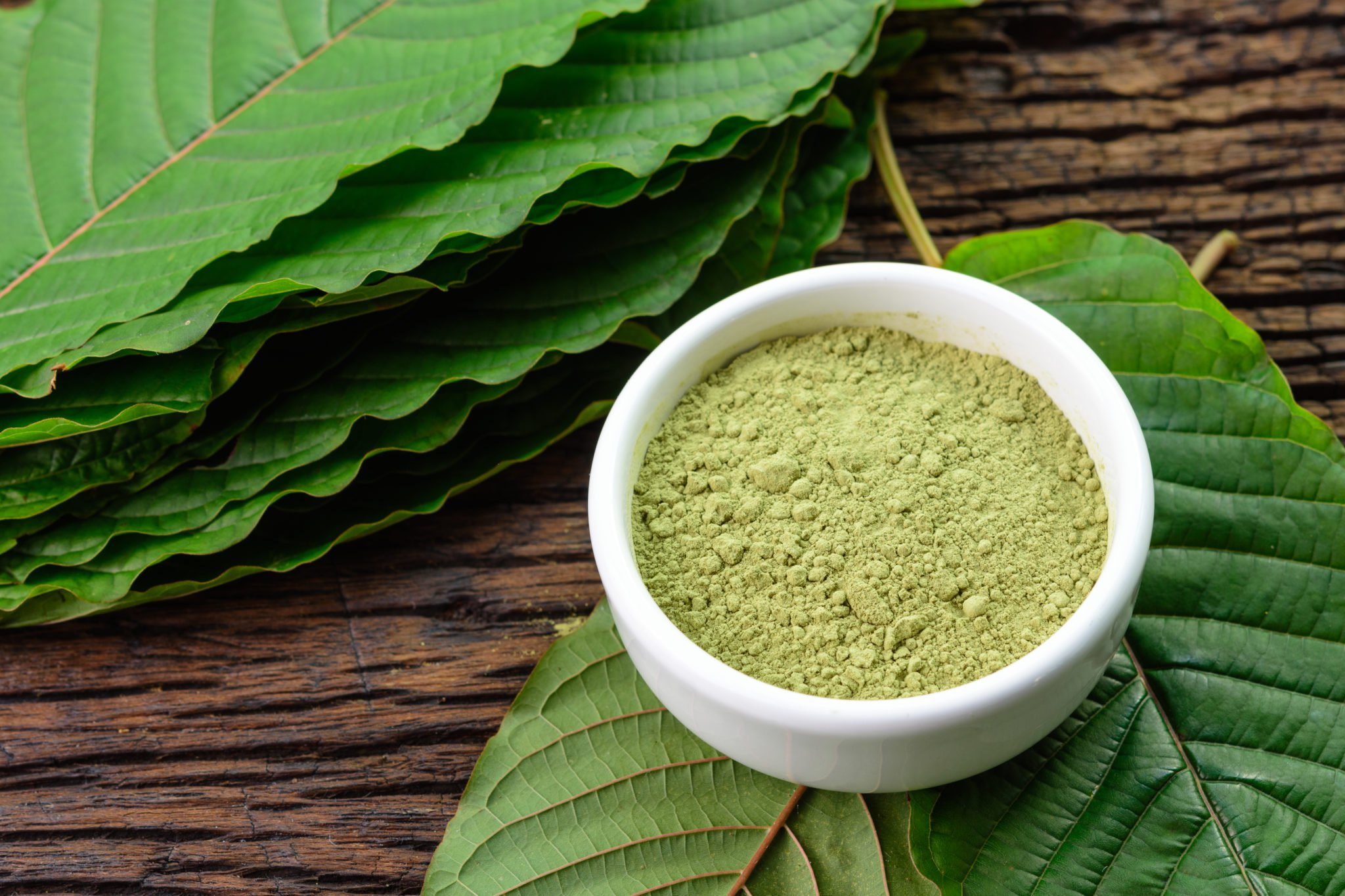 When comparing CBD vs. Kratom, one major difference is that CBD is non-addictive and appears safe even at relatively high doses, while kratom can pose risks of dependency and other side effects. Photo: Powdered kratom in a white bowl sits atop whole mitragyna speciosa leaves.