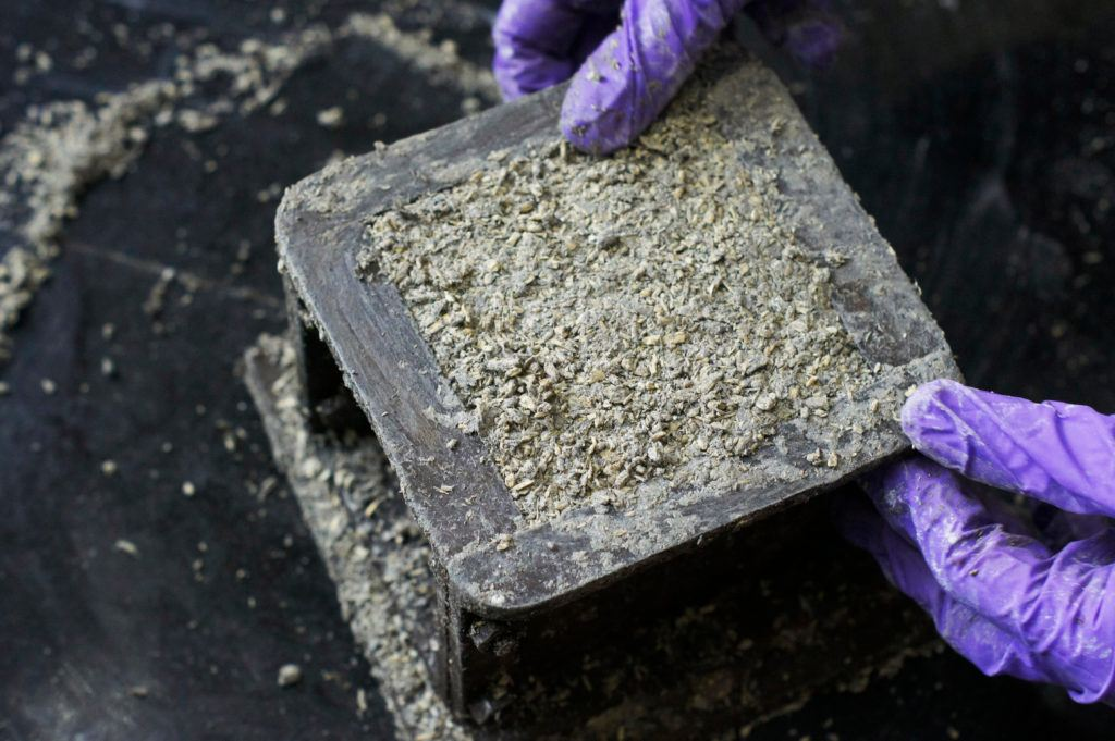 A person wearing gloves forms a cube of hempcrete in a metal mold. Thanks to their challenging climate, hempcrete in Australia is growing in popularity as a building material.