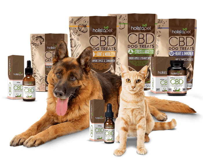 Photo: A dog and cat posed with an array of Holistapet CBD-infused pet products.