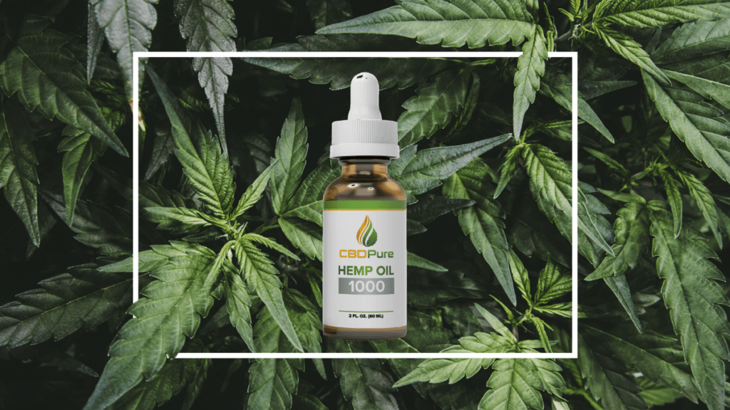 Photo: A bottle of CBD Pure Hemp Oil superimposed on a background of hemp leaves, with a white box drawn around the bottle.