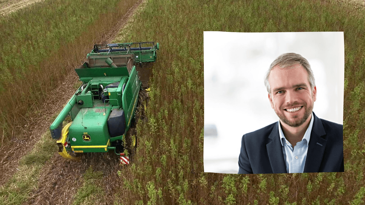 A composite photo showing a tractor harvesting hemp, and a photo of Mark Reinders, a white man with short dirty blonde hair. He is smiling and wearing a suit jacket. Reinders is CEO of HempFlax, one of Europe's leading hemp producers.
