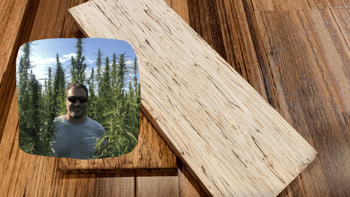 A photo of hemp wood boards, made from compressed hemp fibers, with an insert showing Greg Wilson posing in a hemp field.
