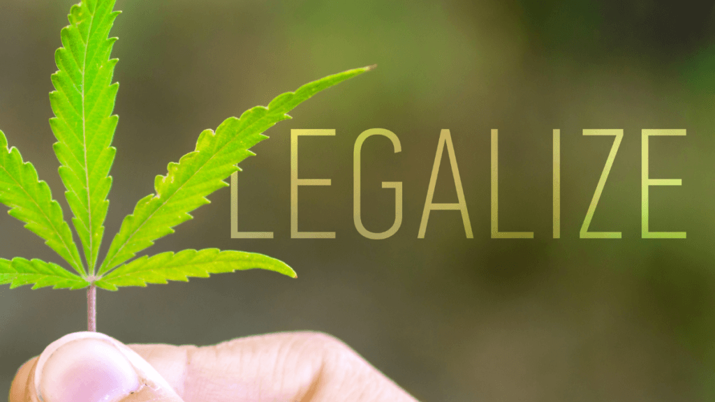 Voters chose cannabis legalization in election 2020. What does that mean for the future of industrial hemp? Photo: A whiite person's hand holds up a hemp leaf, with the word
